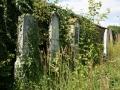 Židovský hřbitov v Přelouči