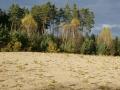 Písečná duna u Semína